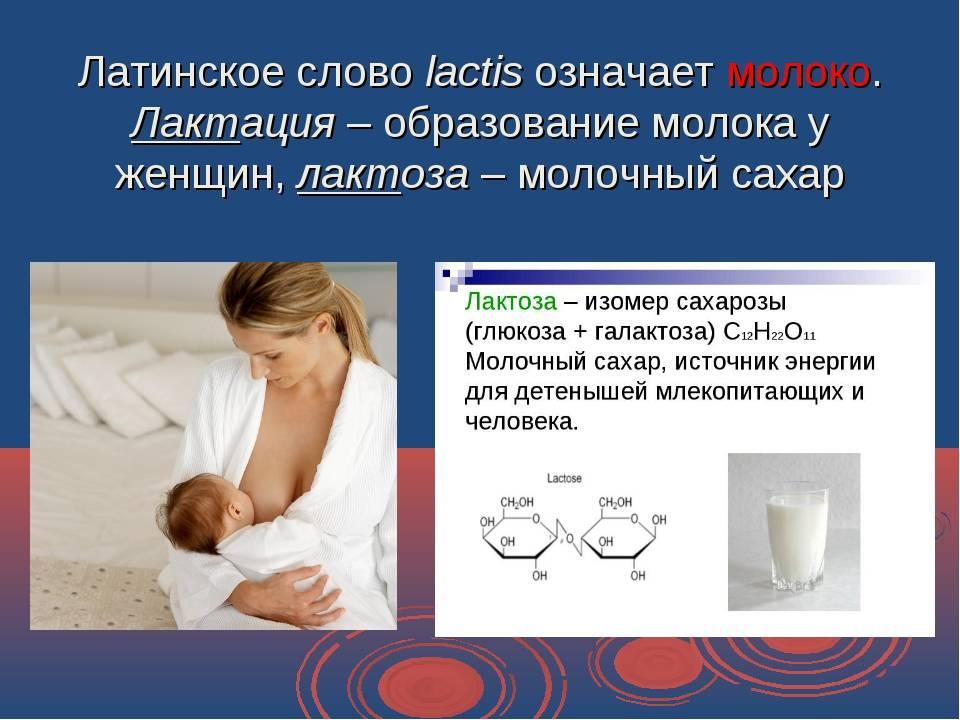 Что такое лактация: как вырабатывается грудное молоко у женщины (физиология)