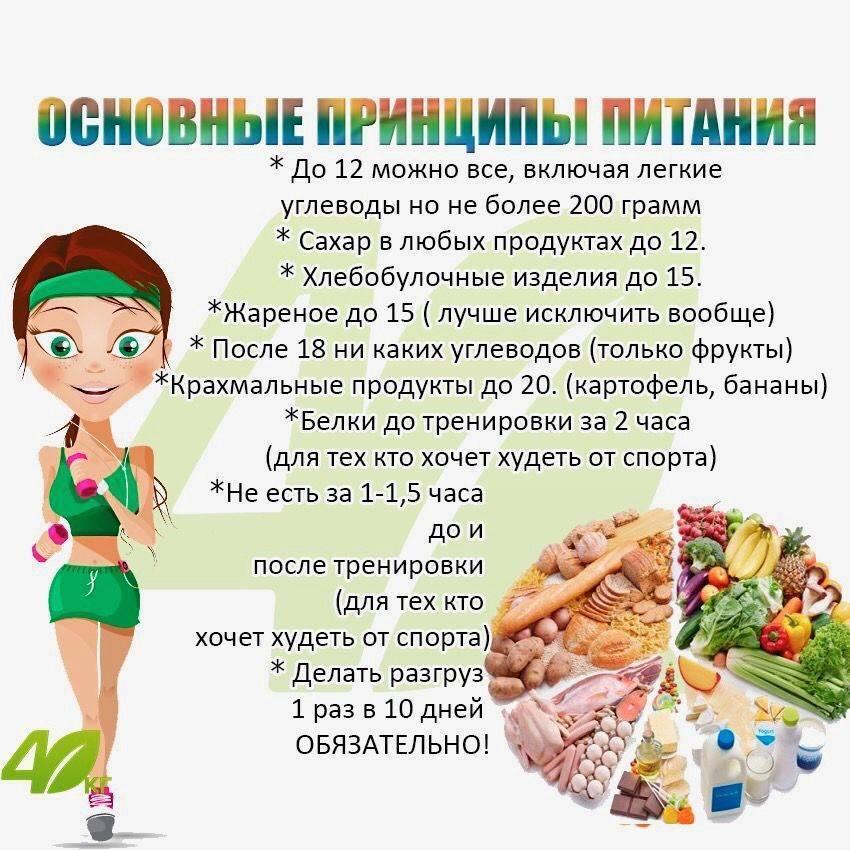 Белковая диета при эко - список продуктов