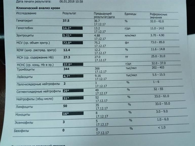 О чем говорит общий анализ крови. показатели анализа крови