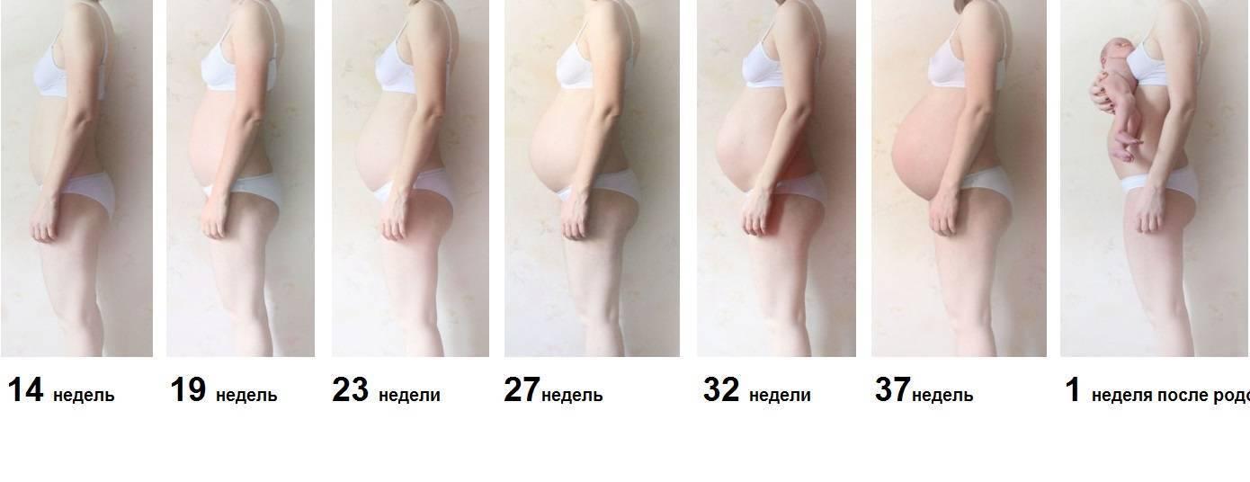 Симптомы заболеваний, диагностика, коррекция и лечение молочных желез kvd9spb.ru. грудь при беременности: когда начинает расти и как меняется на ранних сроках и перед родами | kvd9spb.ru