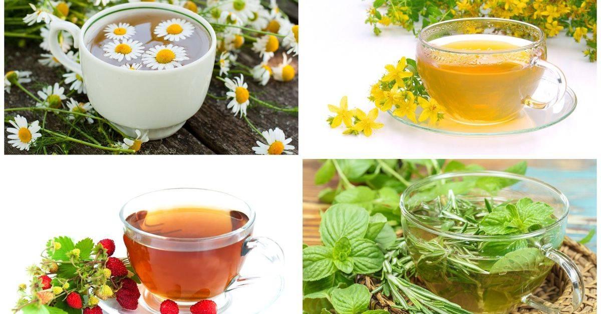С какого возраста можно давать ребенку чай: с какого возраста, со скольки месяцев можно дать зеленый и черный чай грудничку