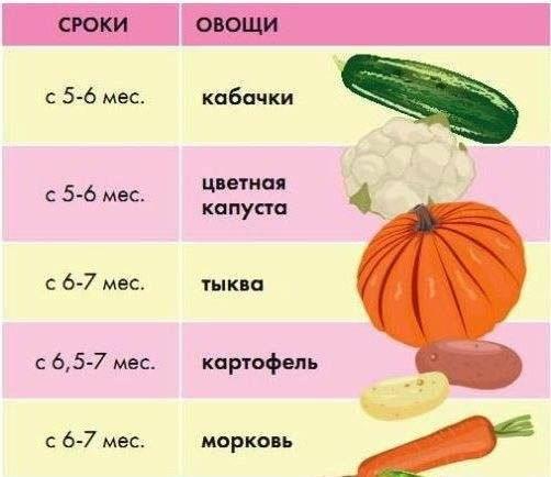 С какого возраста можно давать болгарский перец ребенку: прикорм и польза для детей