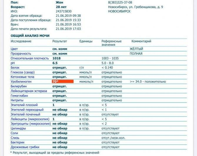 Биохимическое исследование мочи: норма и изменение показателей — «online диагноз»