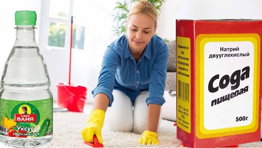Как убрать запах мочи с ковра в домашних условиях, чем вывести неприятный аромат и удалить пятна: советы по чистке с помощью народных рецептов и бытовой химии