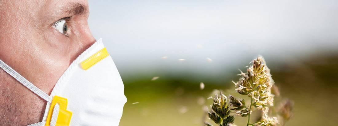 Поллиноз: все об аллергии на цветение