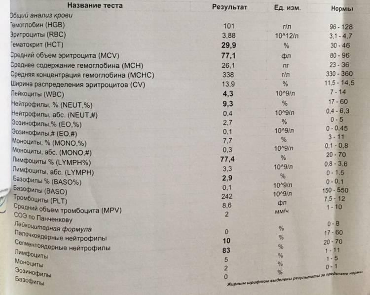Сегментоядерные нейтрофилы у ребёнка: повышенные и пониженные значения