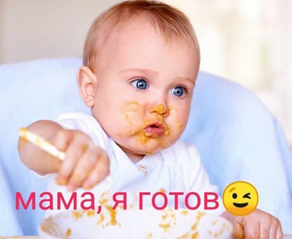Когда вводить прикорм грудничку – 10 признаков готовности ребенка к прикорму