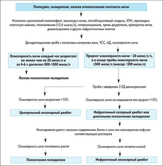 Нефрогенный несахарный диабет. причины, симптомы и лечение нефрогенного несахарного диабета.!