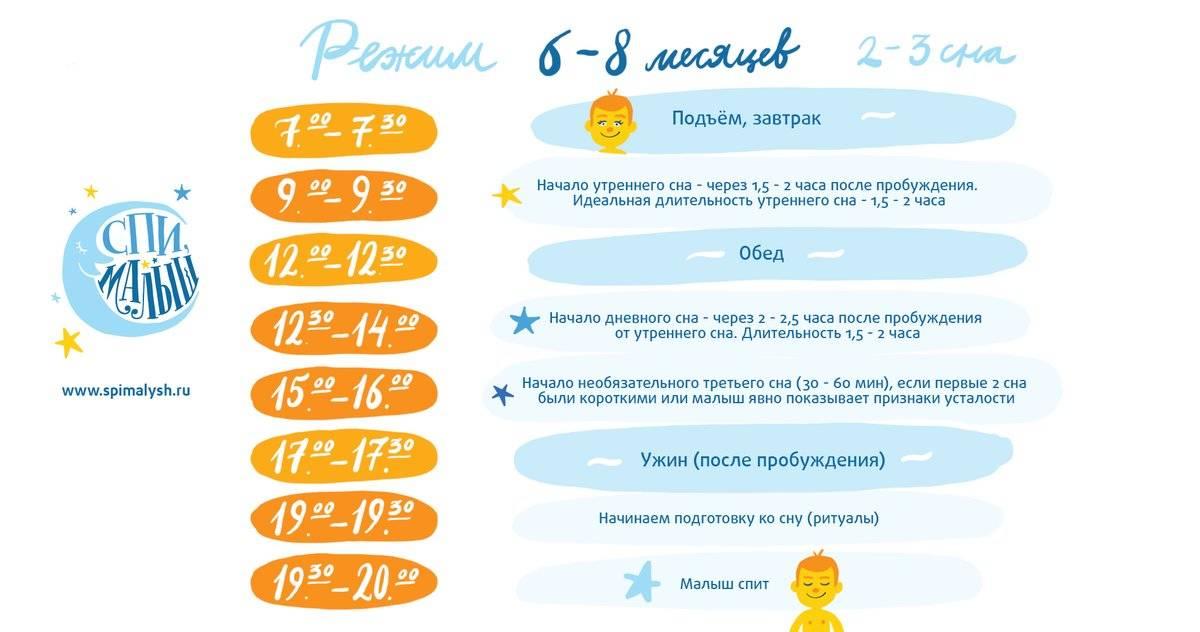Е. комаровский - режим для новорожденного ребенка по часам, по месяцам до года и годовалого