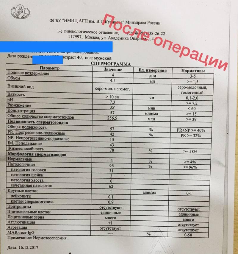 Фрагментация днк сперматозоидов в красноярске | андро-гинекологическая клиника, ооо.