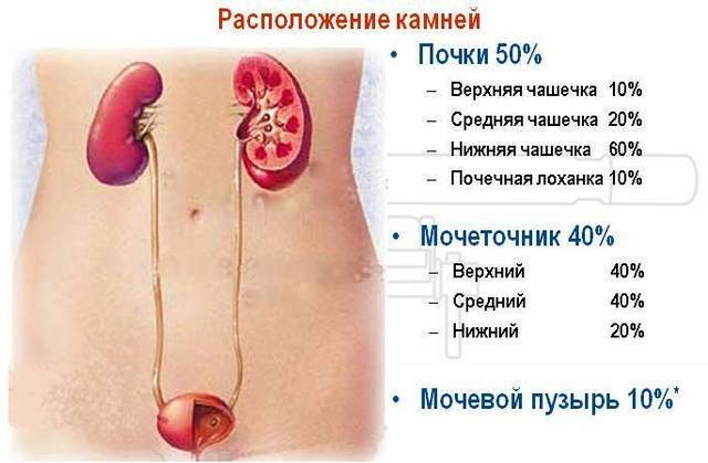Частое мочеиспускание у женщин, мужчин: причины, лечение в киеве