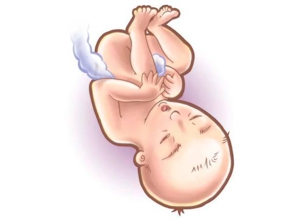 Ребенок в животе дергается, как будто дрожит или у него судороги: что означают резкие шевеления?