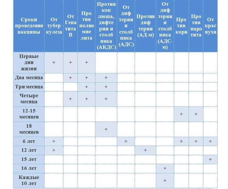 Список вакцинаций для детей от 3-х месяцев | вакцинация | профилактика и оздоровление | услуги