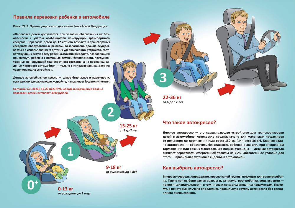 Правила перевозки детей: закон, пдд, штрафы и наказания