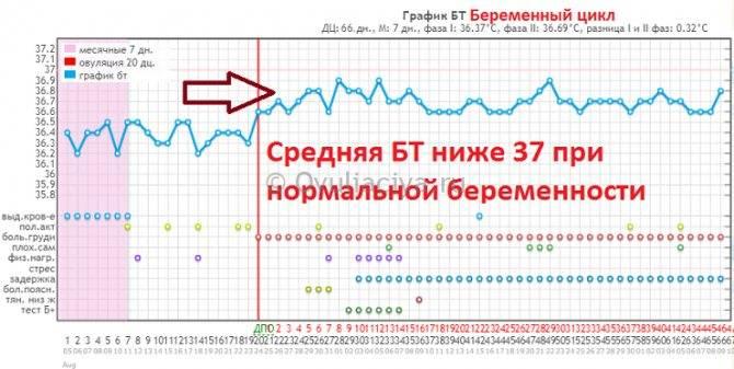 Низкая температура при беременности: нормально ли это? / mama66.ru