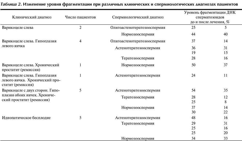Фрагментация днк сперматозоида. анализ tunel в москве