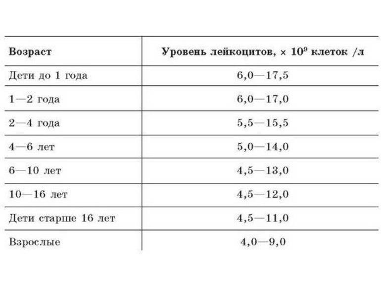Нормы общего анализа крови у детей - расшифровка результатов анализа крови у детей