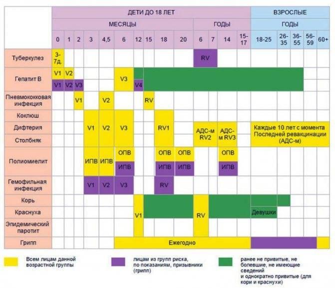 Ревакцинация акдс, кори, краснухи, полиомиелита