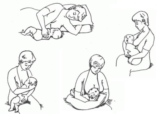 Группа поддержки грудного вскармливания «молочные реки»: двенадцать поз для кормления
