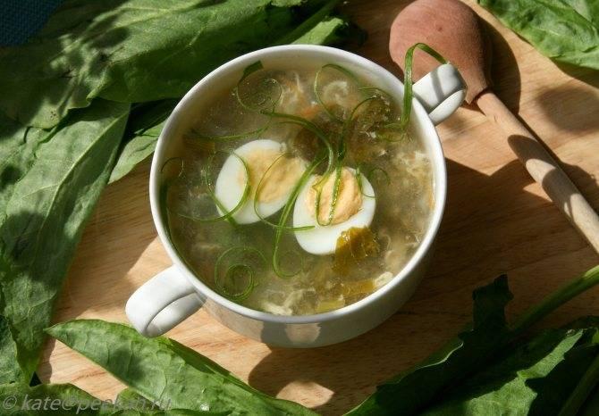 Щавель при грудном вскармливании: можно ли вводить его в свое меню при гв в виде супа и салатов, с какого месяца, а также когда и как давать продукт ребенку?