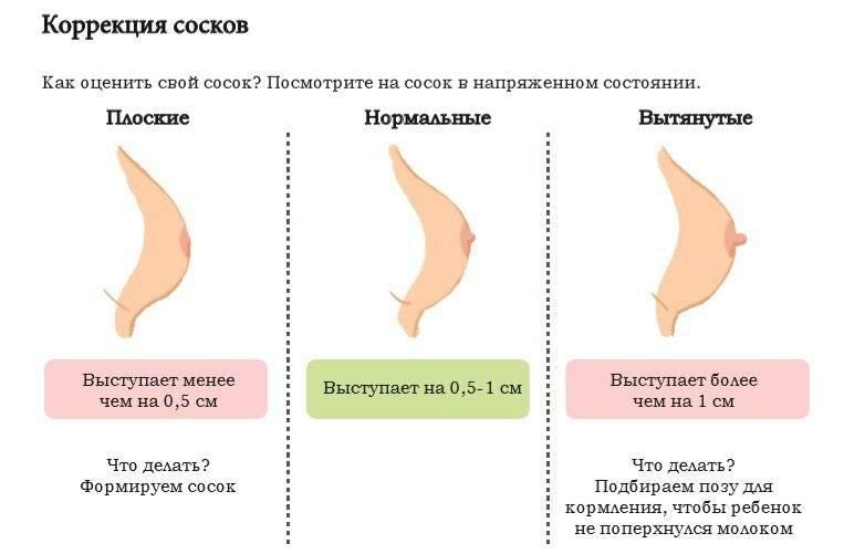 Когда начинает болеть грудь при беременности: на каком сроке болезненность и нагрубание молочных желез считается нормой