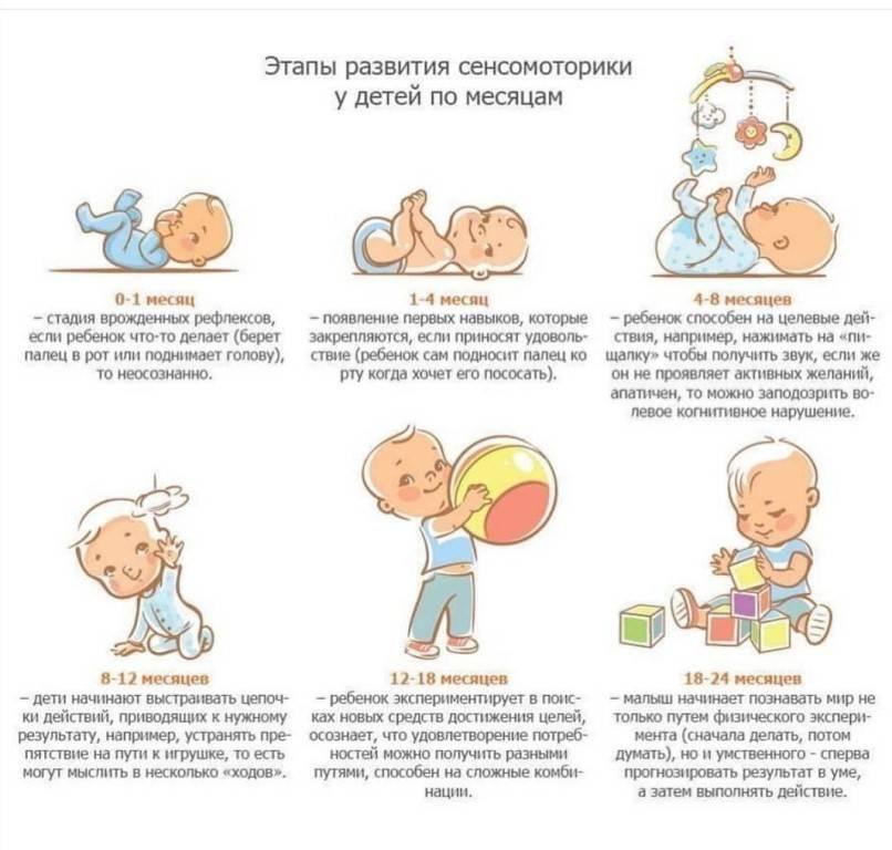 Особенности развития в семь месяцев: что должен уметь делать ребёнок и как его дальше развивать