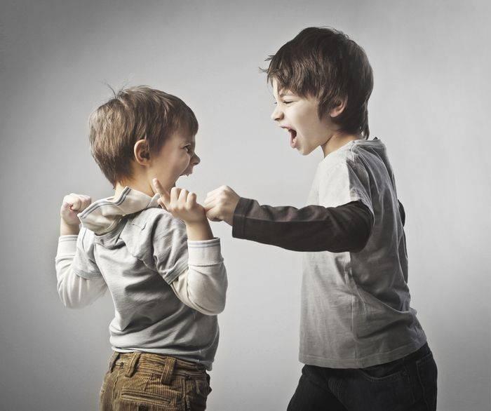 Маленькие драчуны или ваш ребенок дерется?   семейный круг