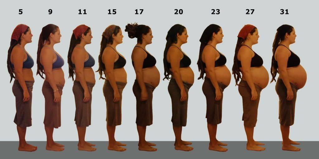 Что можно узнать, посмотрев на живот беременной?   аборт в спб