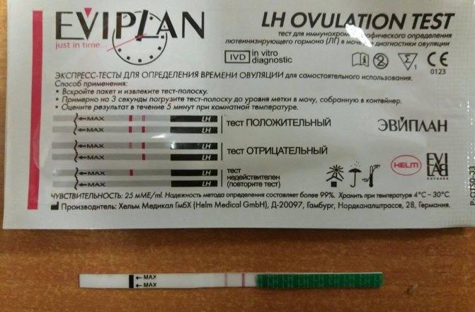 Тест на беременность. как он работает? когда и как делается? виды теста на беременность :: polismed.com