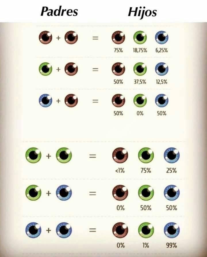 Какие глаза будут у ребенка: таблица, возможны ли исключения