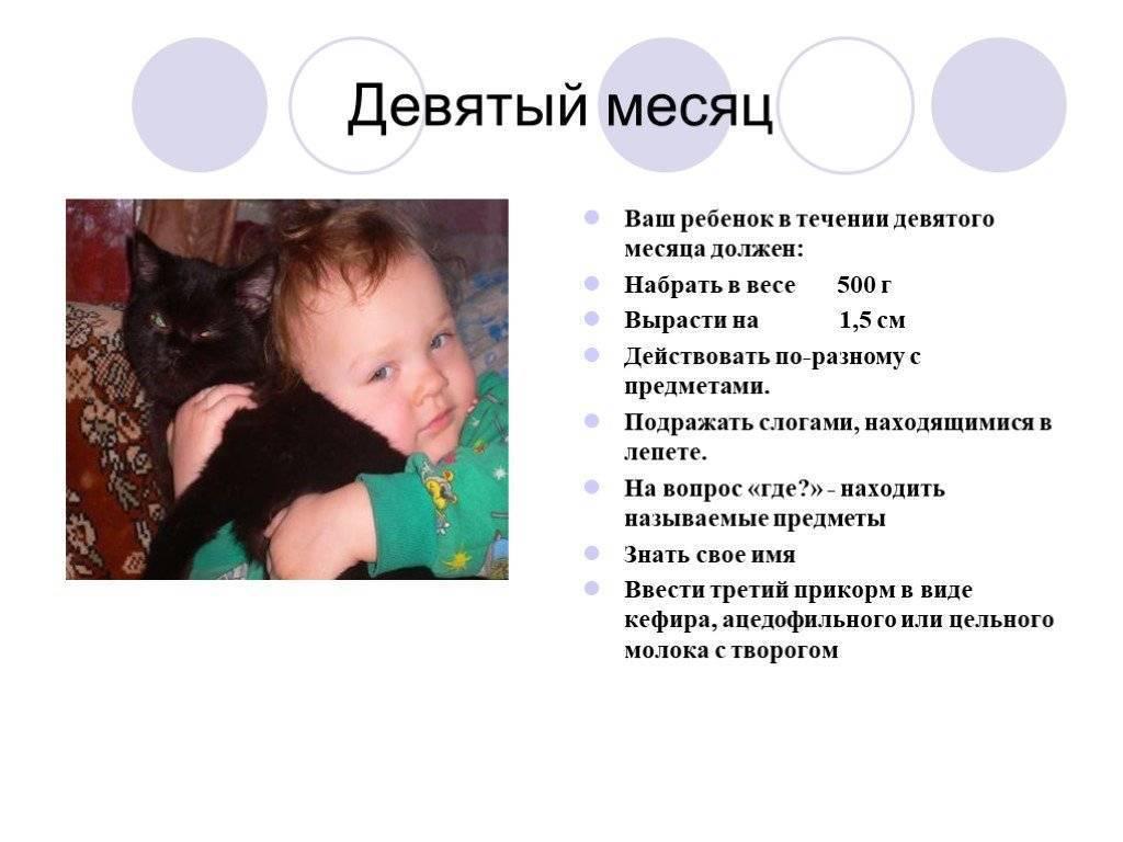 Ребенку 5 месяцев: развитие, вес и рост, питание мальчика и девочки (видео) | календарь развития | vpolozhenii.com
