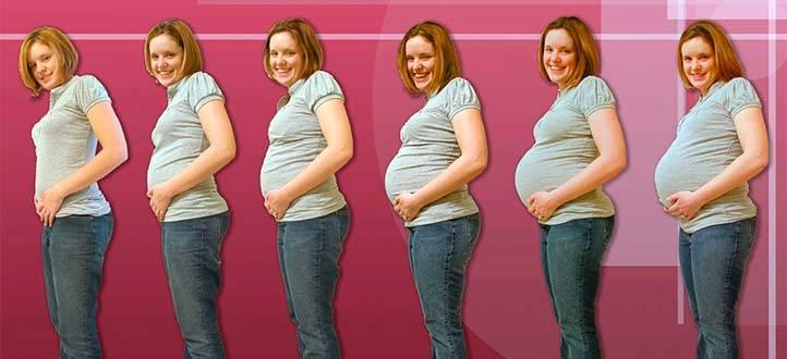 Большой живот при беременности? срочно на узи провериться на пузырный занос