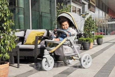 Прогулочная коляска: разнообразие моделей и особенности выбора