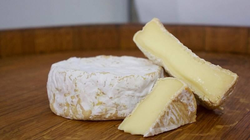 Можно ли сыр с плесенью при беременности и кормлению грудью