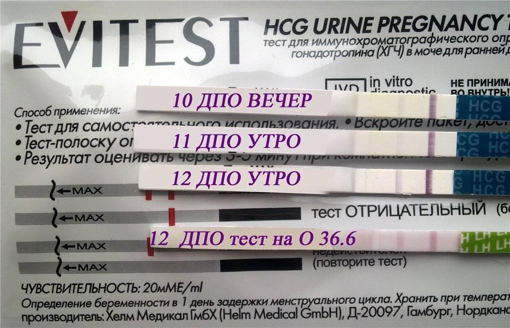 В каких случаях ошибается тест на беременность?
