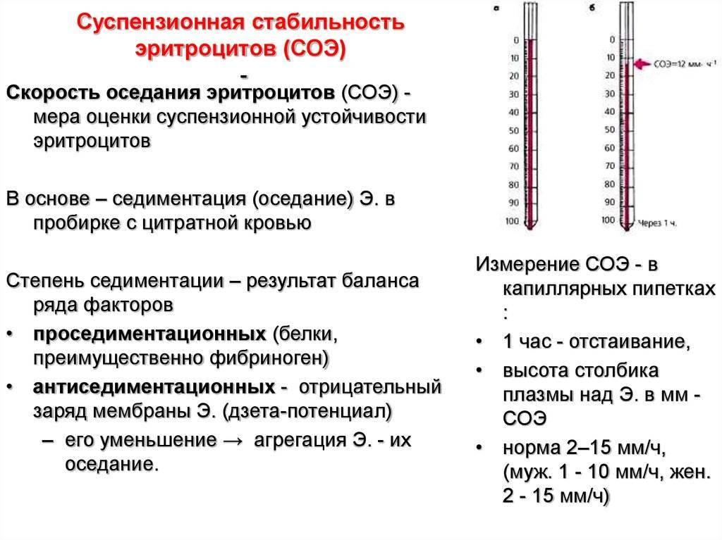 Гематокрит при беременности: 1, 2, 3 триместр, норма, понижен, повышен, анализ крови