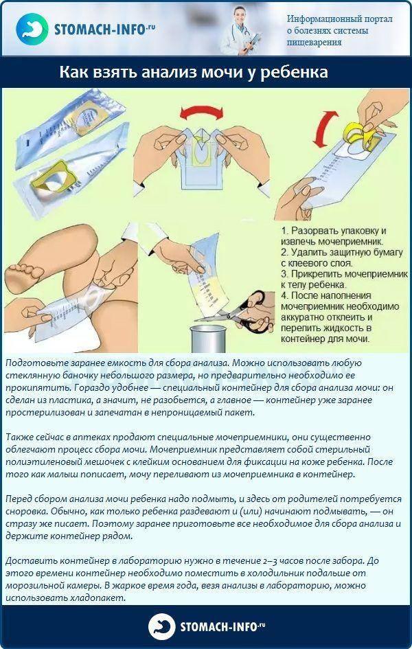 Рекомендации относительно правильного сбора кала на анализ у грудничка