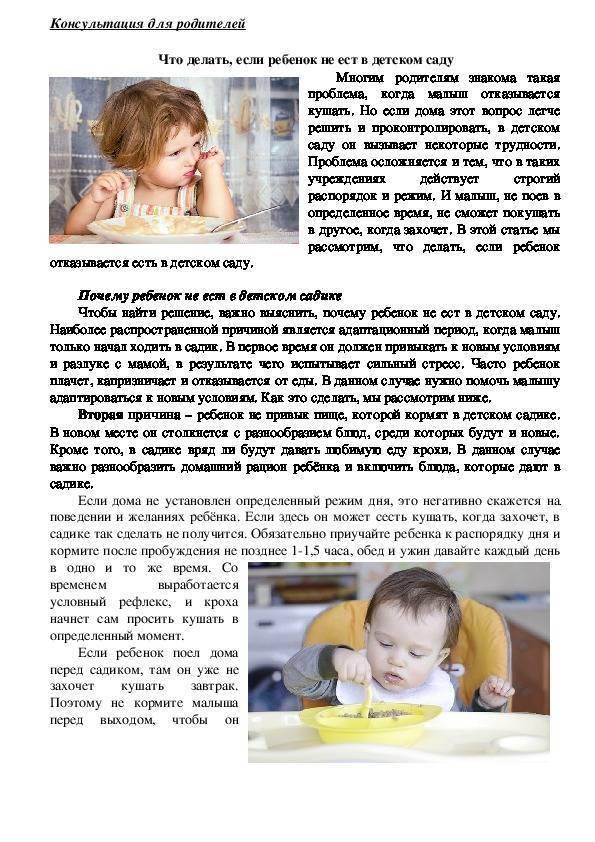 Что делать, если ребенок не хочет есть в детском саду: советы педиатров и психологов