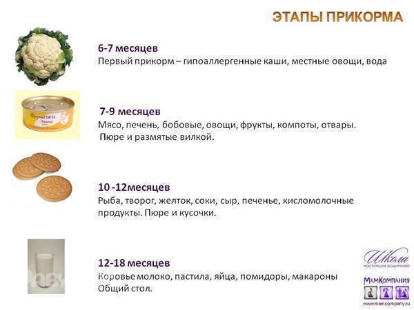 Картофельноепюредлягрудничка: со скольки месяцев можно давать, рецепт приготовления, как правильно приготовить для первого прикорма