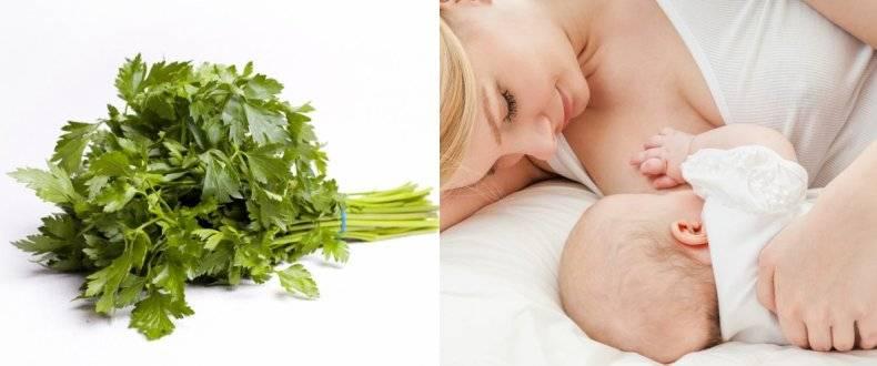 Зелень при грудном вскармливании: какую и когда можно?