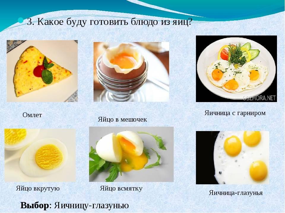 Яичница и омлет для кормящей мамы - моймалыш