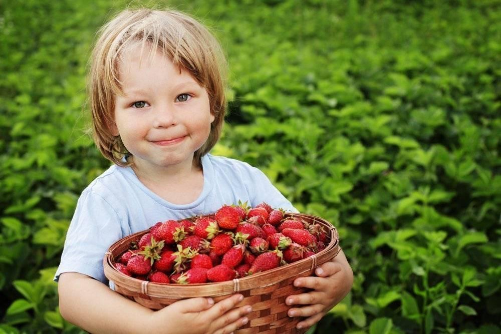Аллергия на коже у взрослых - симптомы, методы лечения и примеры с фотографиями