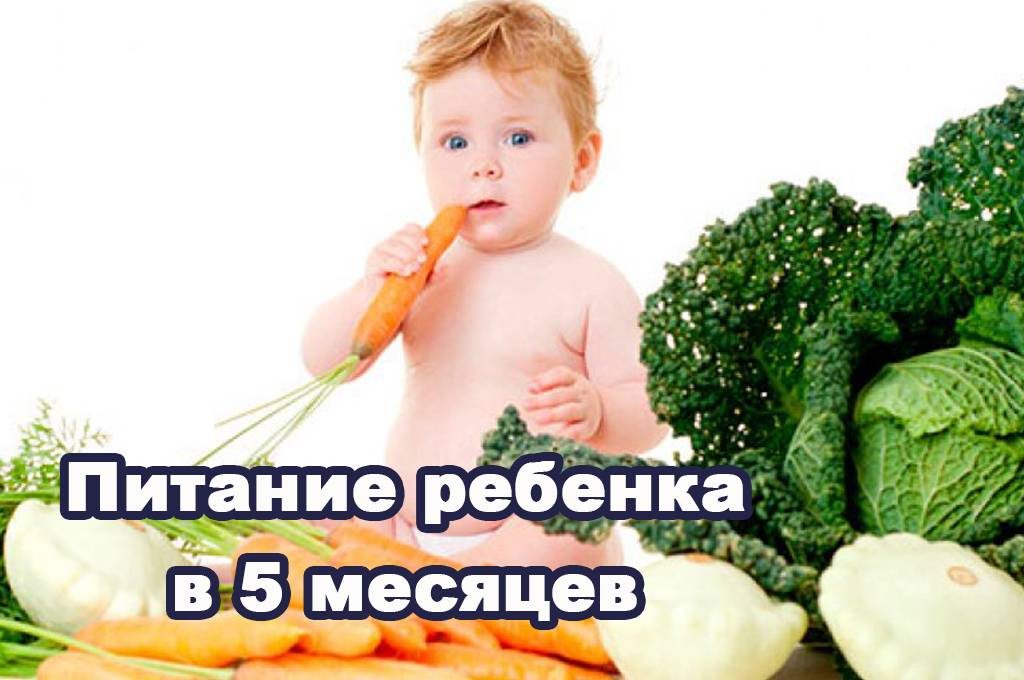 Развитие ребенка в 11 месяцев: что должен уметь, особенности питания малыша, рост, вес и другие рекомендации с фото и видео