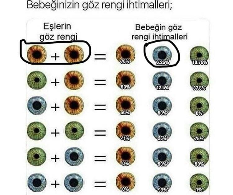 С какими глазами рождаются младенцы. цвет глаз у младенцев: как, когда и почему он меняется. серый цвет глаз новорожденных