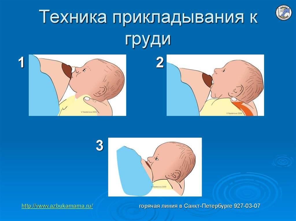Как часто прикладывать ребенка к груди?