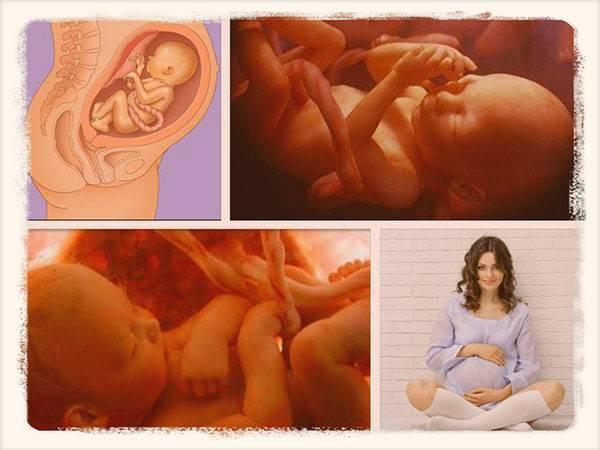Можно ли делать наклоны при беременности medistok.ru - жизнь без болезней и лекарств medistok.ru - жизнь без болезней и лекарств