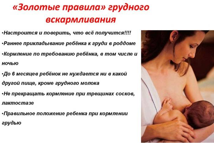 Уход за грудью кормящей мамы | уход за грудью во время вскармливания (кормления)