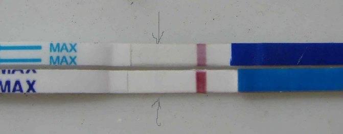 Тест на беременность: бледная полоска, слабо видна, что показывает, фото, отзывы