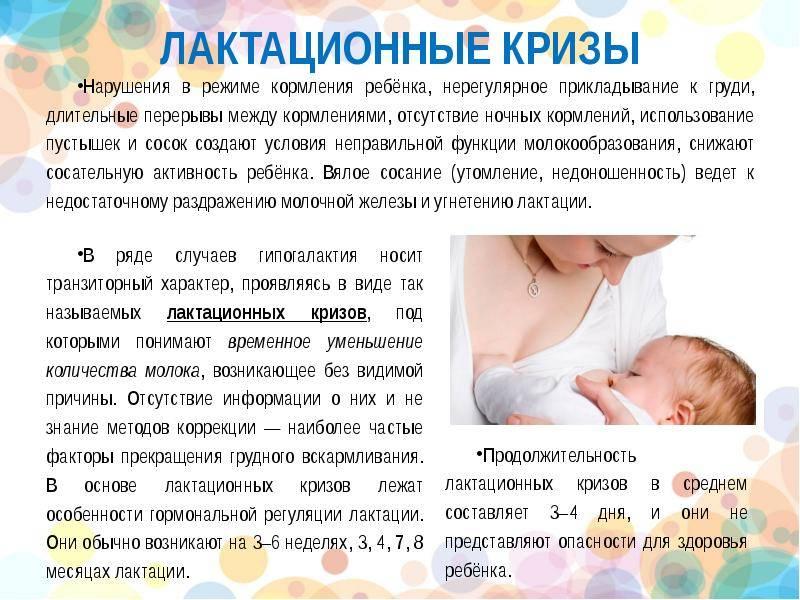 Сколько времени кормить ребенка грудным молоком, как долго ребенок сосет грудь, продолжительность гв