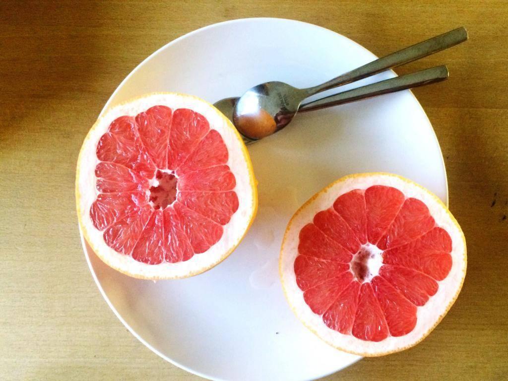 Можно ли есть грейпфрут при беременности?